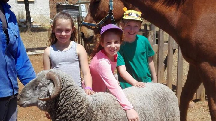 Grade 3 outing to a farm. A fantastic time was had by all.